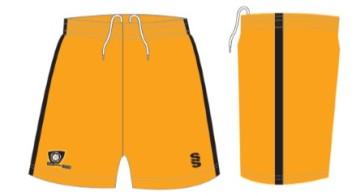 Kit(shorts) 2015 - 2016